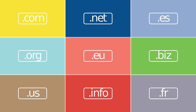 Domain Name क्या है और कैसे खरीदें?